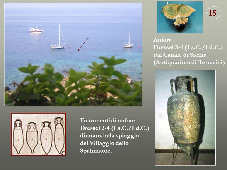15 Anfora Dressel 2-4 (I a.C./I d.C.) dal Canale di Sicilia
