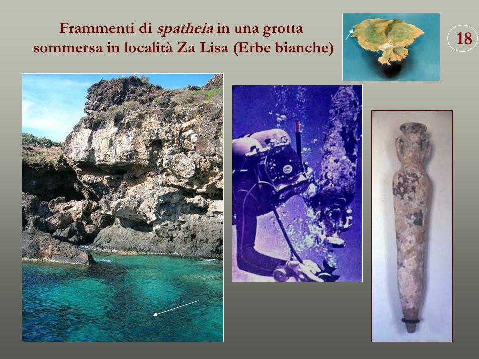 18 Frammenti di spatheia in una grotta