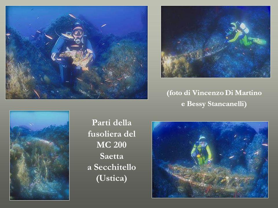 Parti della fusoliera del MC 200 Saetta a Secchitello (Ustica)