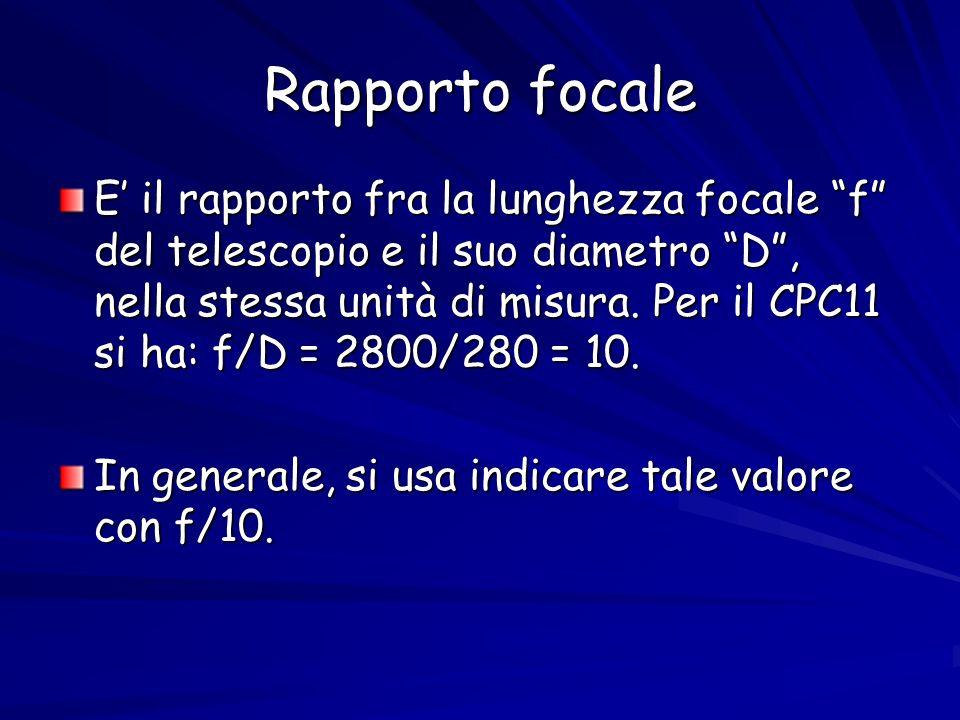 Rapporto focale