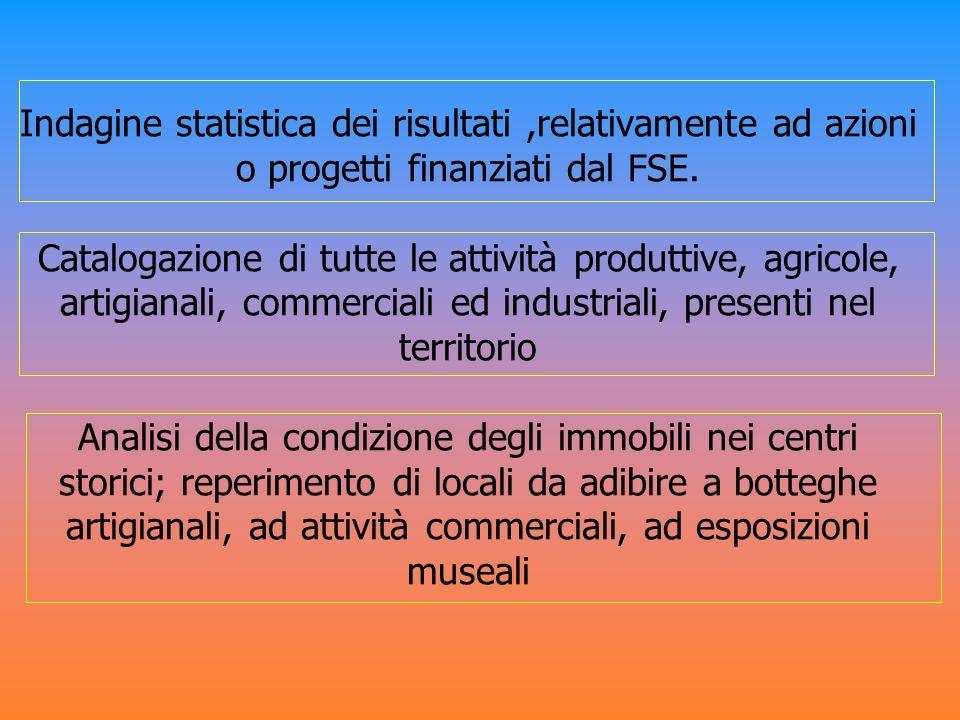 Indagine statistica dei risultati ,relativamente ad azioni o progetti finanziati dal FSE.