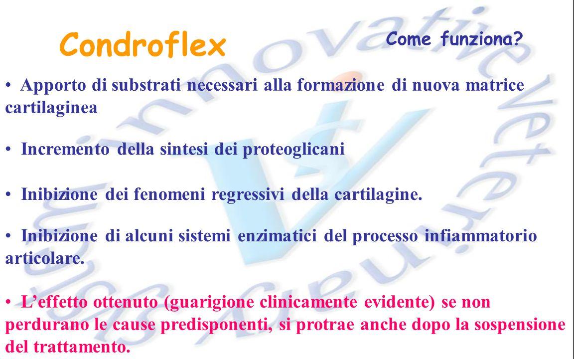 Condroflex Come funziona