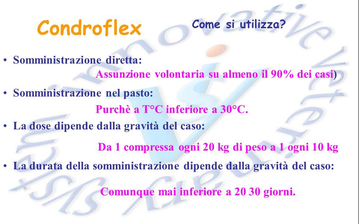 Condroflex Come si utilizza Somministrazione diretta: