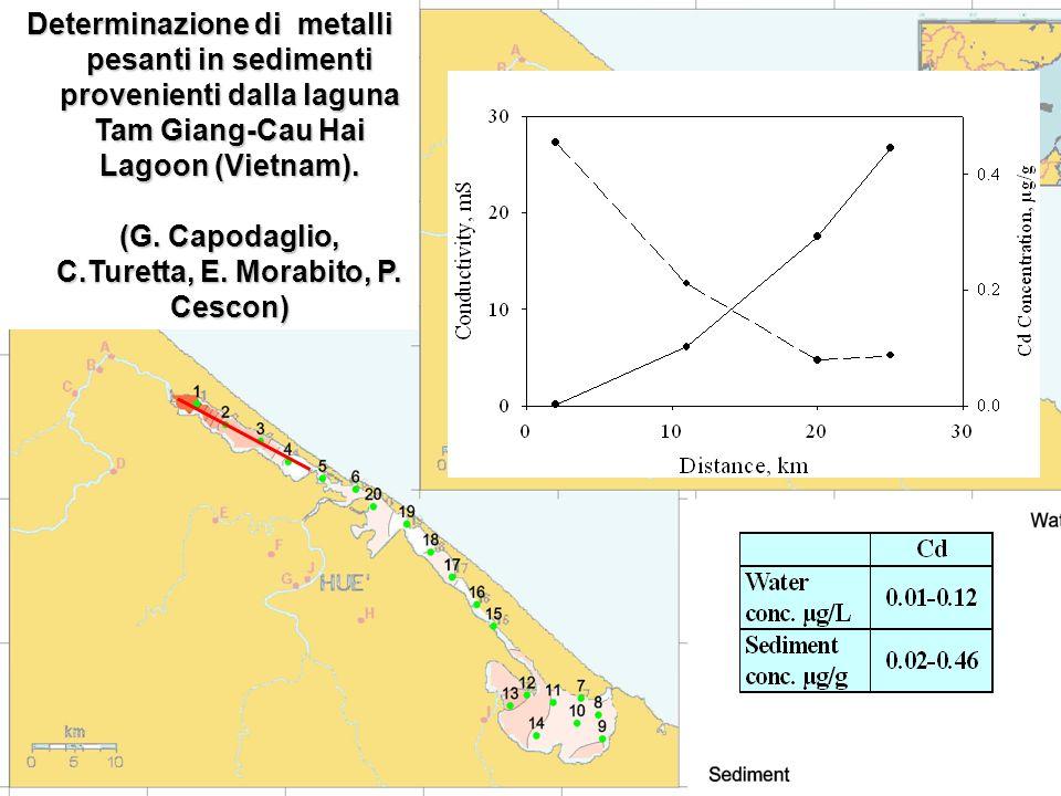 Determinazione di metalli pesanti in sedimenti provenienti dalla laguna Tam Giang-Cau Hai Lagoon (Vietnam).