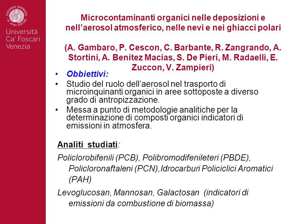 Microcontaminanti organici nelle deposizioni e nell'aerosol atmosferico, nelle nevi e nei ghiacci polari (A. Gambaro, P. Cescon, C. Barbante, R. Zangrando, A. Stortini, A. Benitez Macias, S. De Pieri, M. Radaelli, E. Zuccon, V. Zampieri)