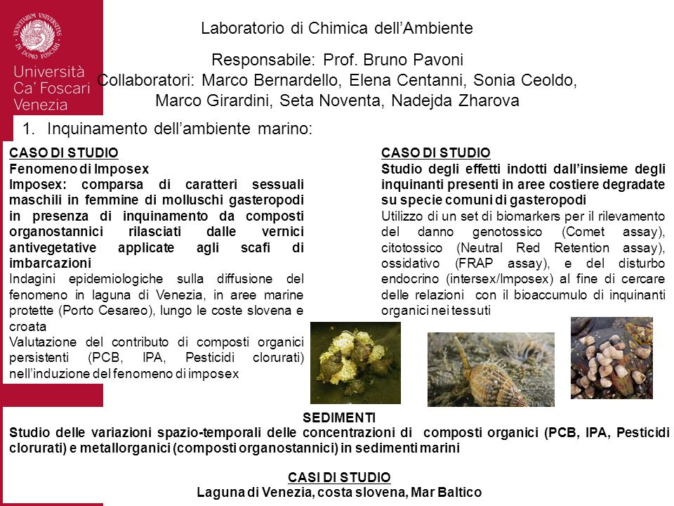Laboratorio di Chimica dell'Ambiente