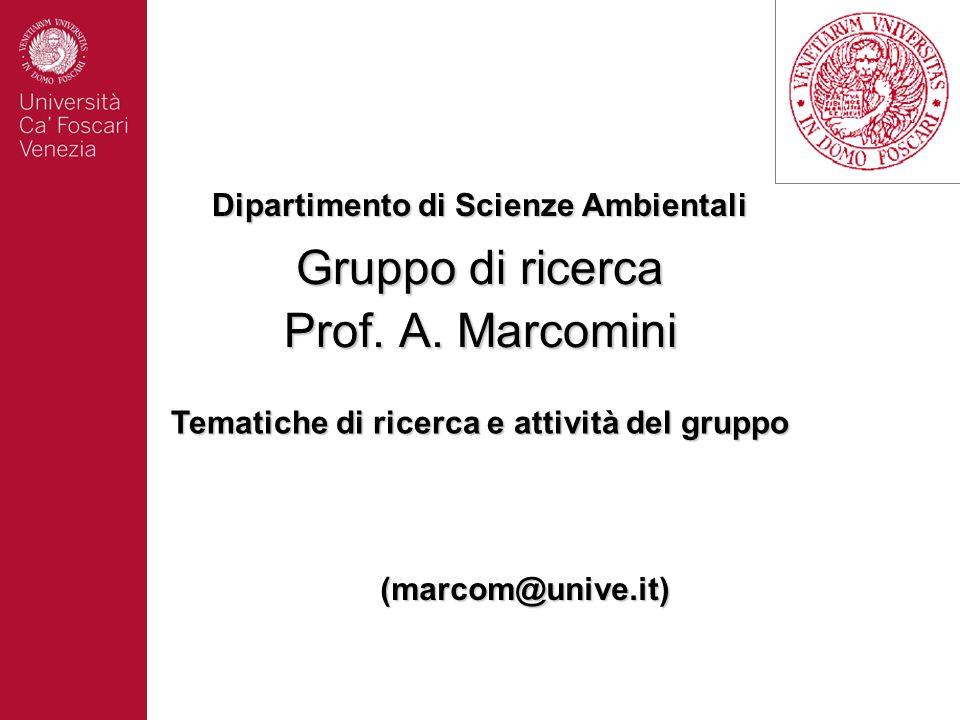 Gruppo di ricerca Prof. A. Marcomini