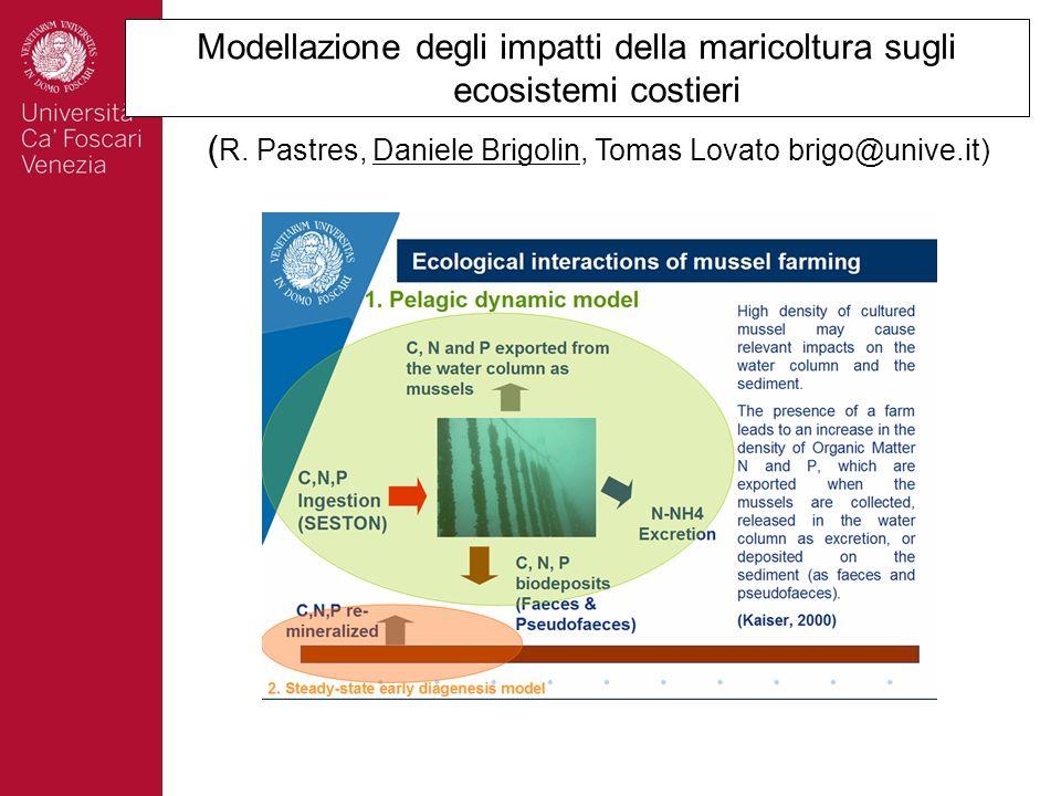Modellazione degli impatti della maricoltura sugli ecosistemi costieri