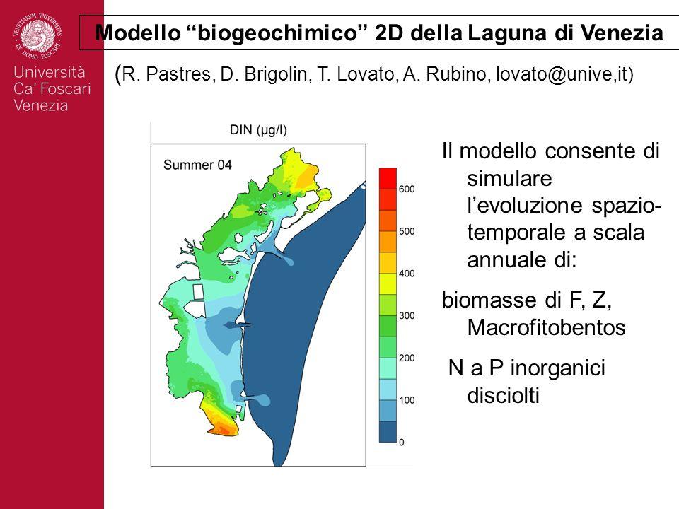 Modello biogeochimico 2D della Laguna di Venezia
