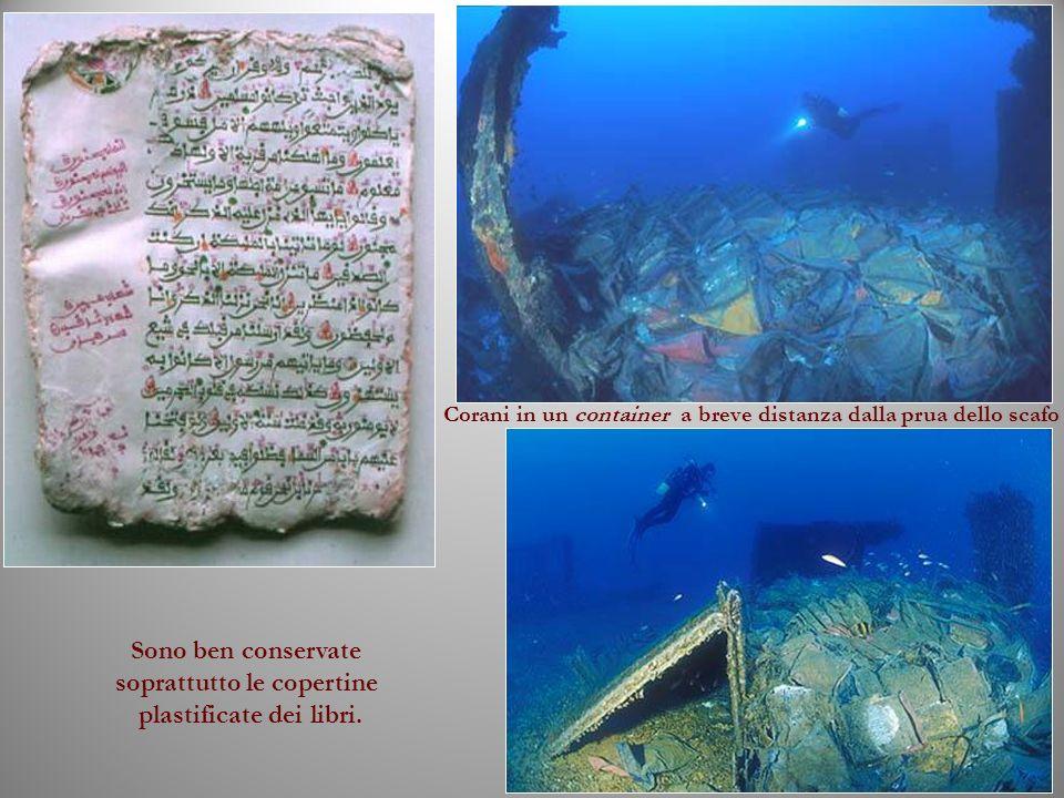 Sono ben conservate soprattutto le copertine plastificate dei libri.