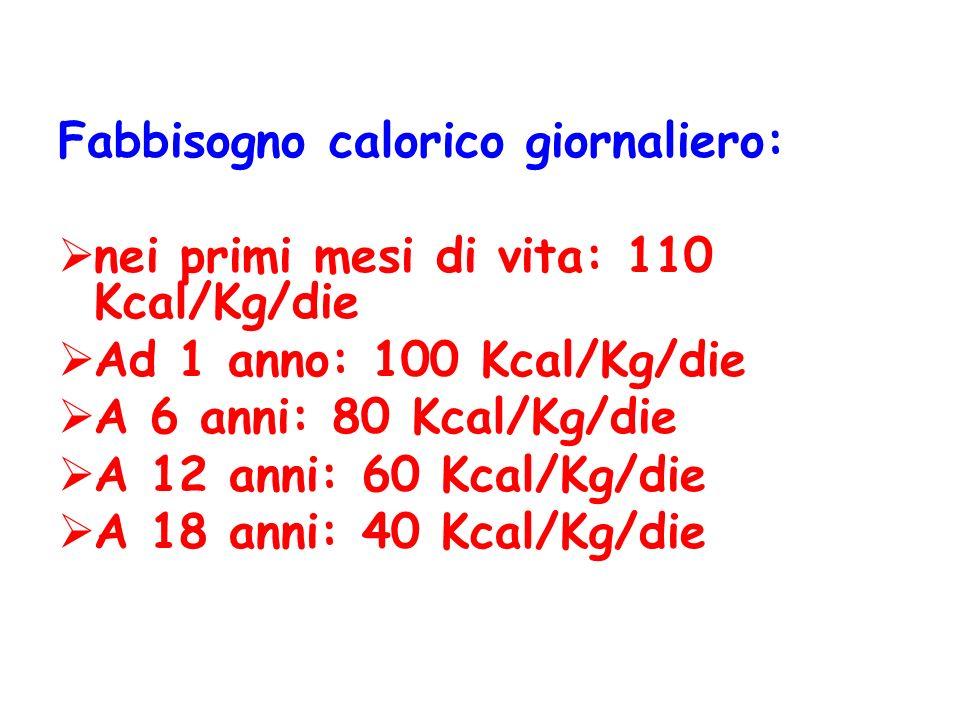 Fabbisogno calorico giornaliero: