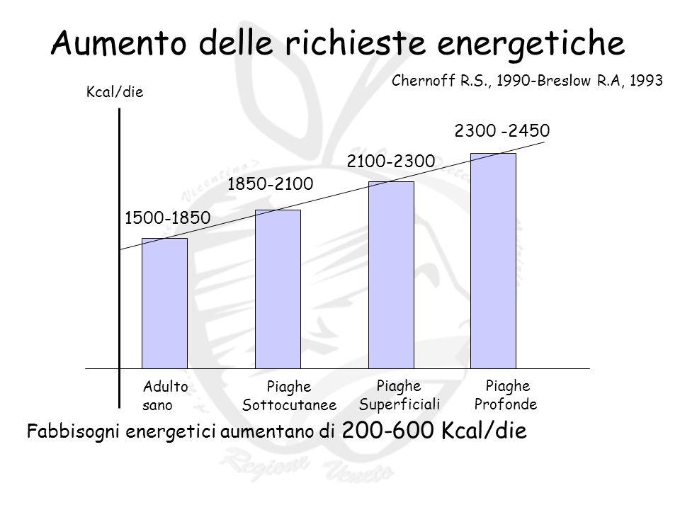Aumento delle richieste energetiche