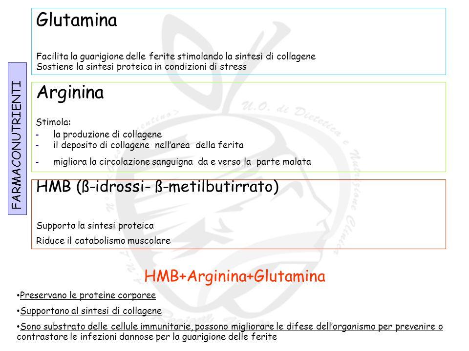 HMB+Arginina+Glutamina