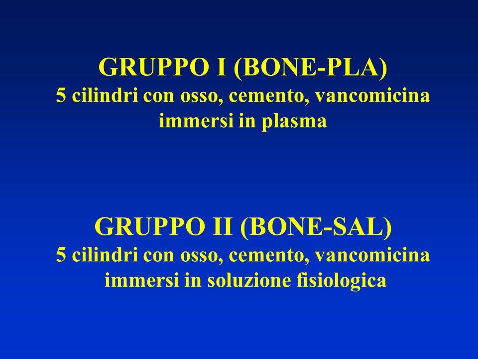 GRUPPO I (BONE-PLA) 5 cilindri con osso, cemento, vancomicina immersi in plasma GRUPPO II (BONE-SAL) 5 cilindri con osso, cemento, vancomicina immersi in soluzione fisiologica