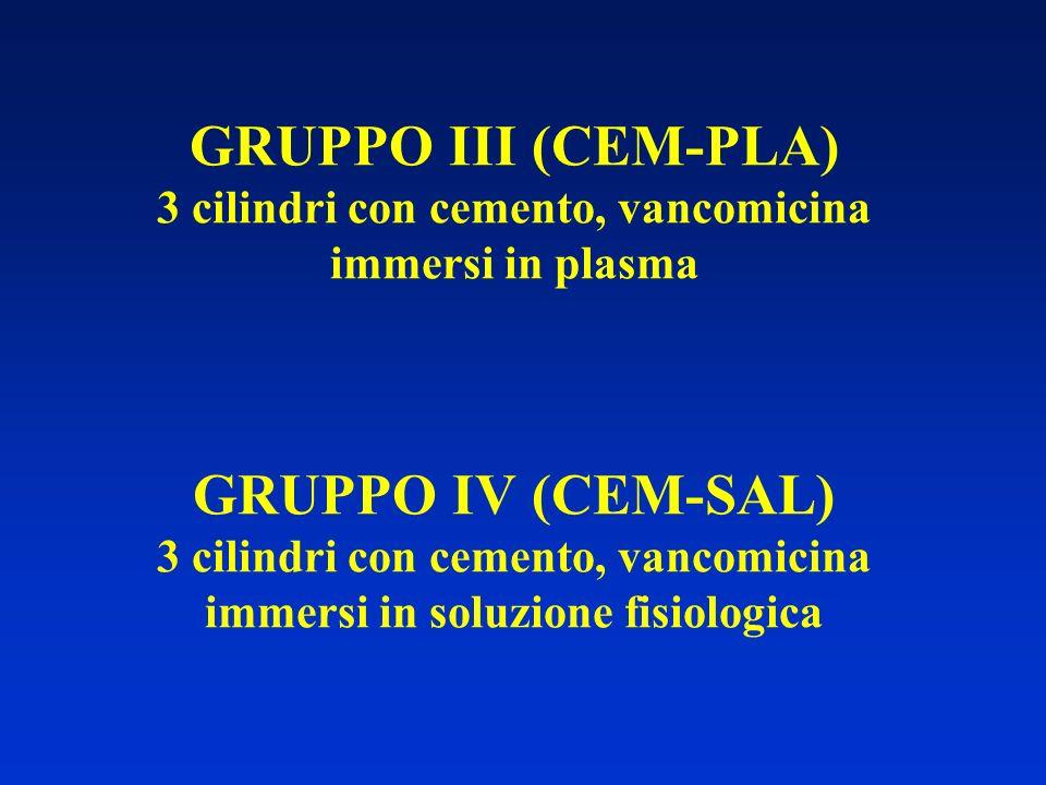 GRUPPO III (CEM-PLA) 3 cilindri con cemento, vancomicina immersi in plasma GRUPPO IV (CEM-SAL) 3 cilindri con cemento, vancomicina immersi in soluzione fisiologica