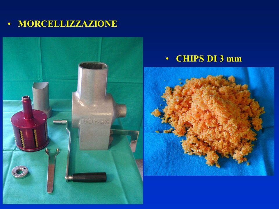MORCELLIZZAZIONE CHIPS DI 3 mm