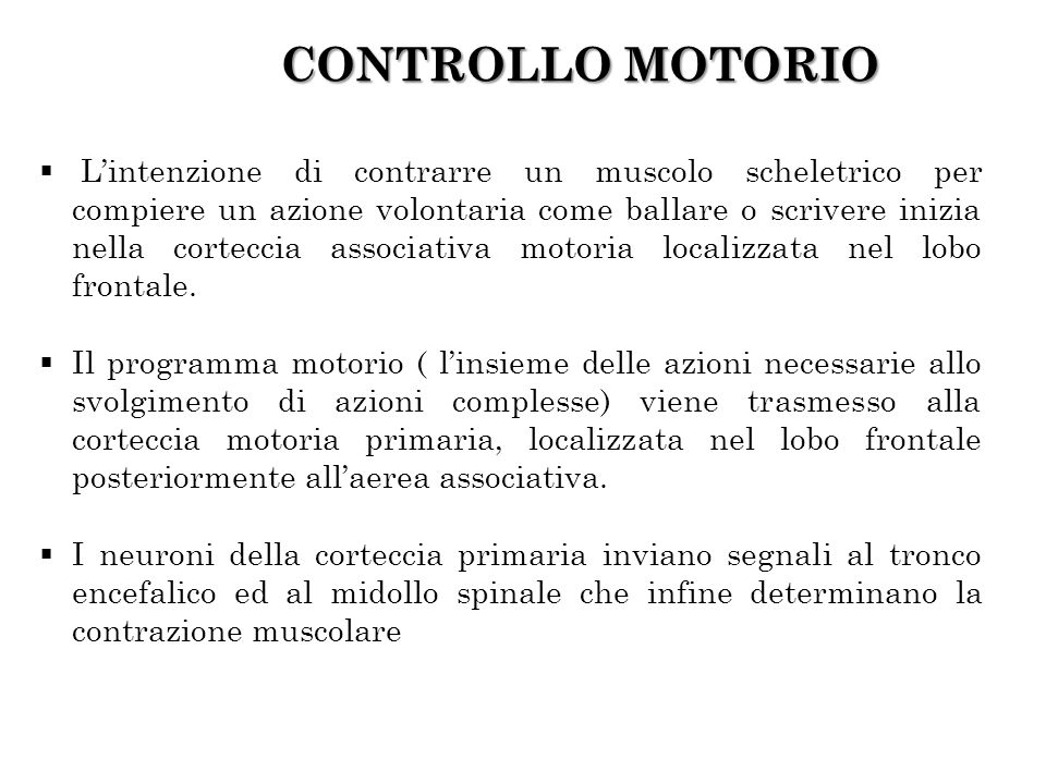 CONTROLLO MOTORIO