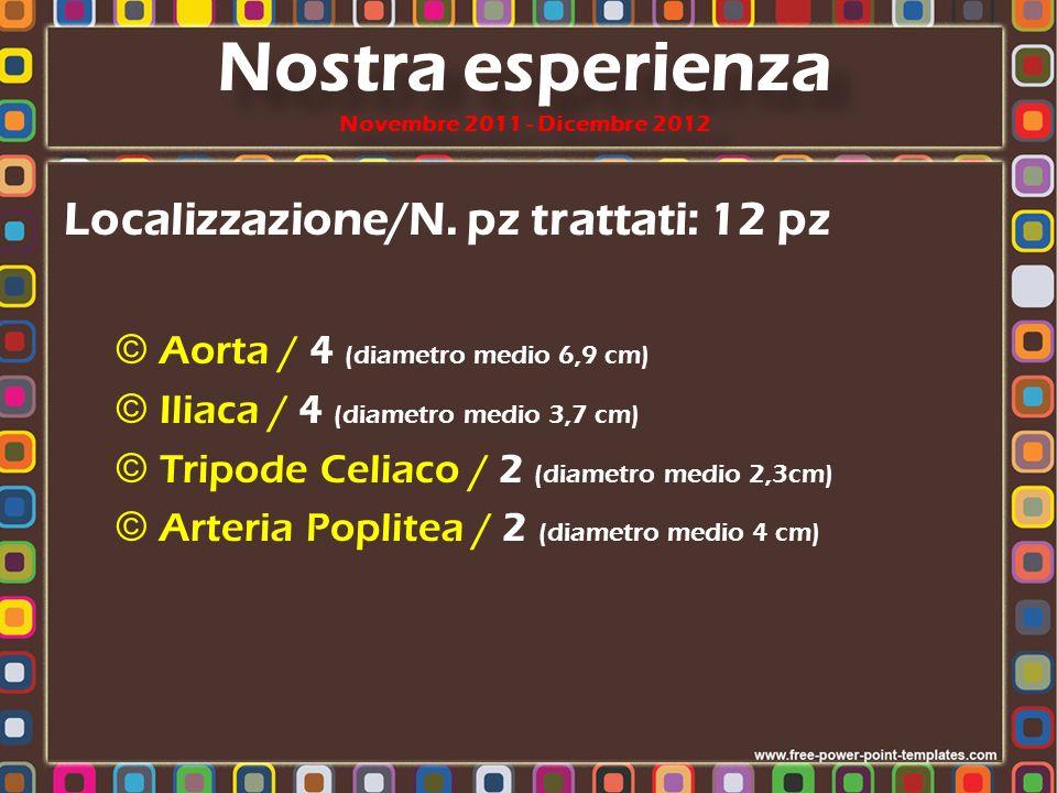 Nostra esperienza Novembre 2011 - Dicembre 2012