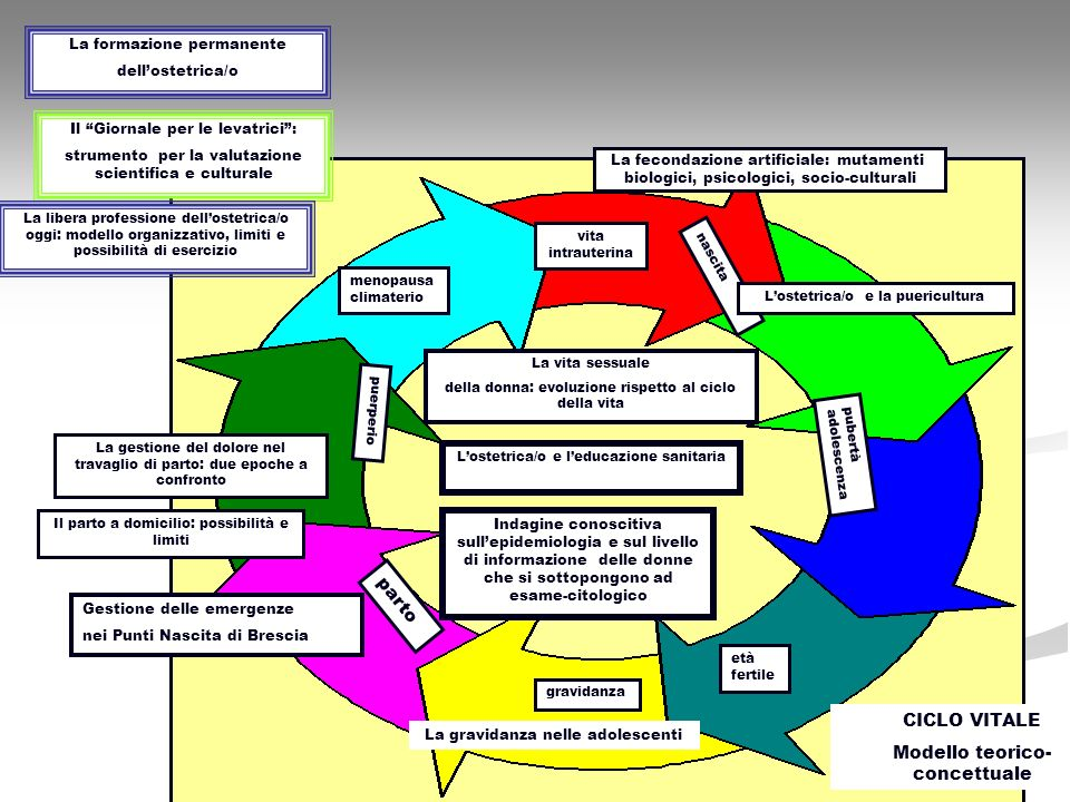 Modello teorico-concettuale