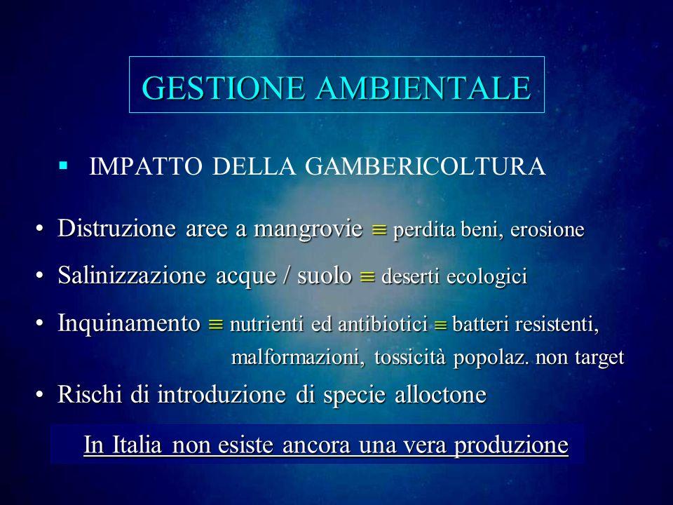 GESTIONE AMBIENTALE IMPATTO DELLA GAMBERICOLTURA