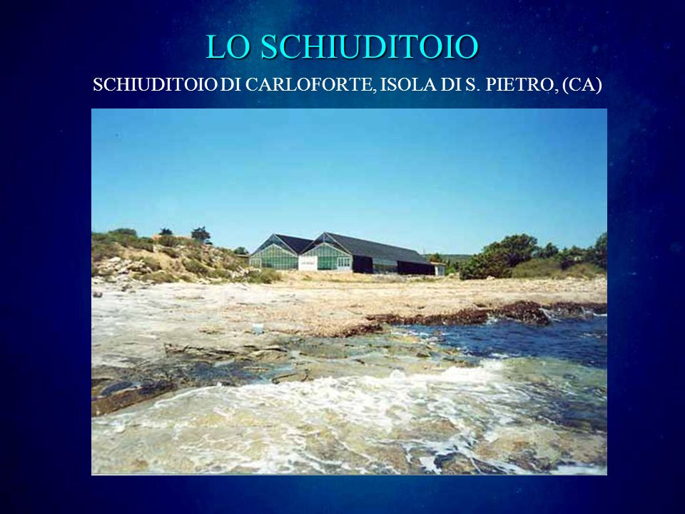 LO SCHIUDITOIO SCHIUDITOIO DI CARLOFORTE, ISOLA DI S. PIETRO, (CA)