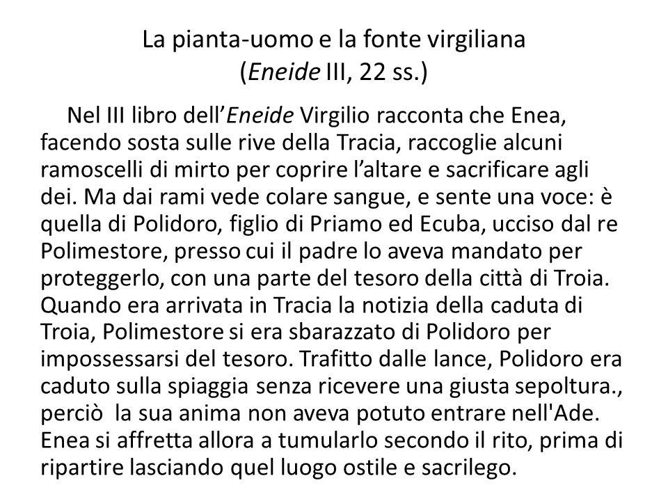 La pianta-uomo e la fonte virgiliana (Eneide III, 22 ss.)