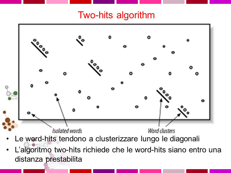 Two-hits algorithm Le word-hits tendono a clusterizzare lungo le diagonali.