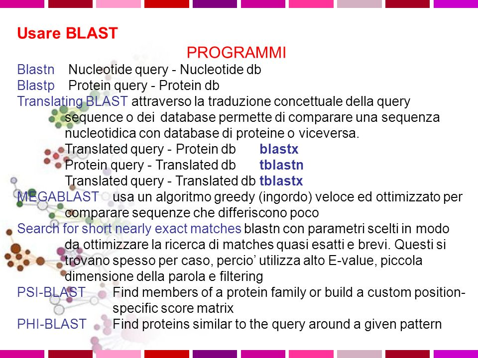 Usare BLAST PROGRAMMI Blastn Nucleotide query - Nucleotide db