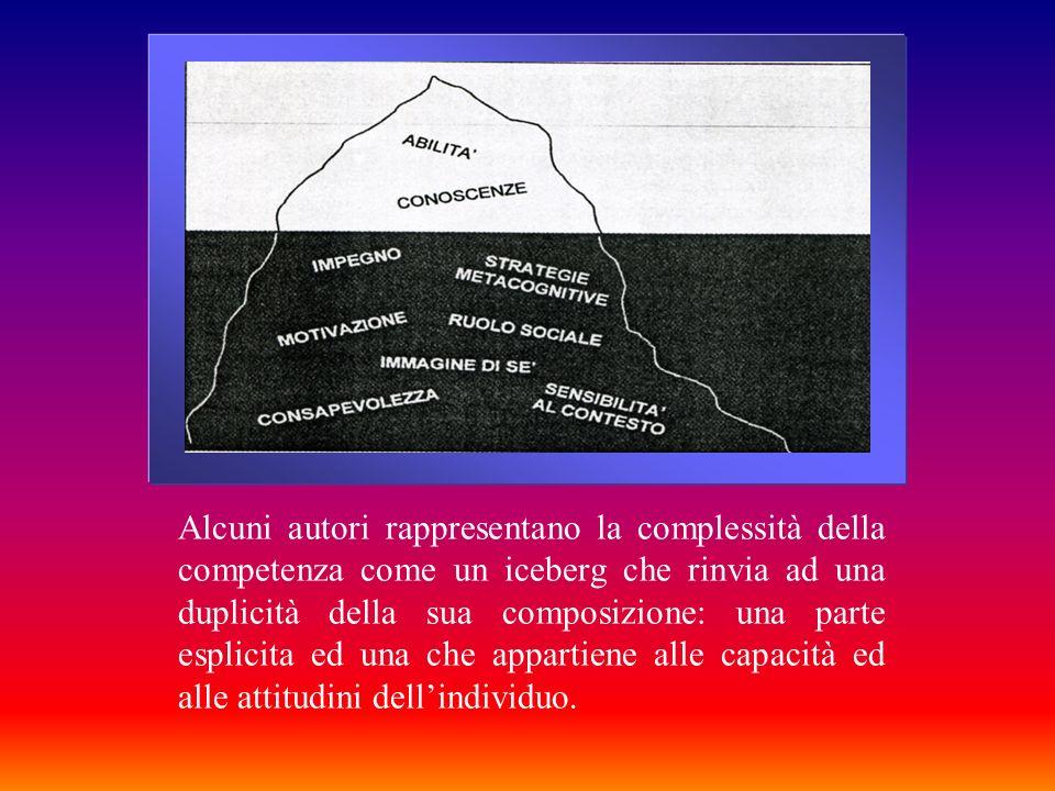 Alcuni autori rappresentano la complessità della competenza come un iceberg che rinvia ad una duplicità della sua composizione: una parte esplicita ed una che appartiene alle capacità ed alle attitudini dell'individuo.