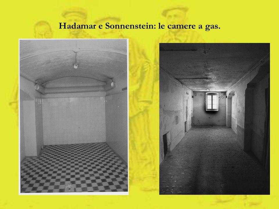 Hadamar e Sonnenstein: le camere a gas.