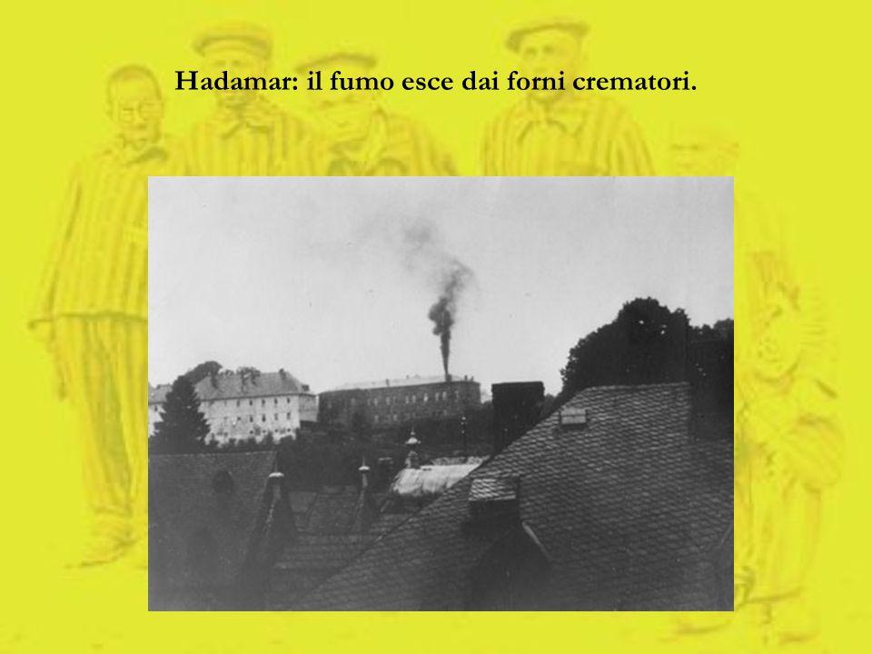 Hadamar: il fumo esce dai forni crematori.