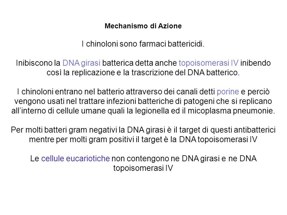 I chinoloni sono farmaci battericidi.