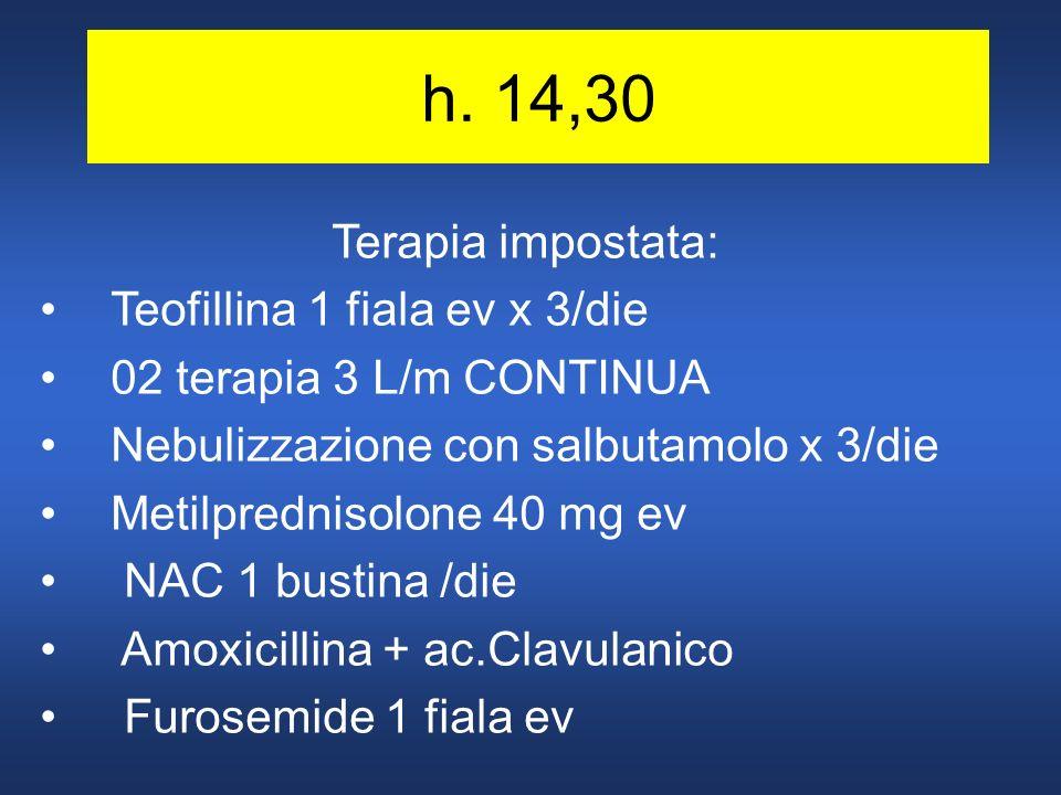 h. 14,30 Terapia impostata: Teofillina 1 fiala ev x 3/die