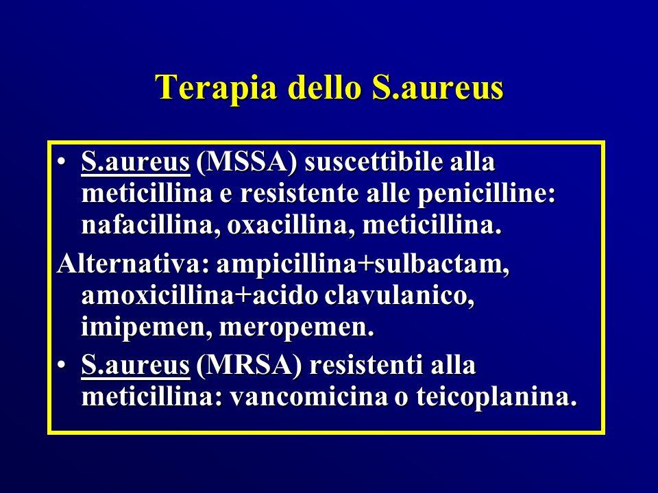 Terapia dello S.aureus S.aureus (MSSA) suscettibile alla meticillina e resistente alle penicilline: nafacillina, oxacillina, meticillina.
