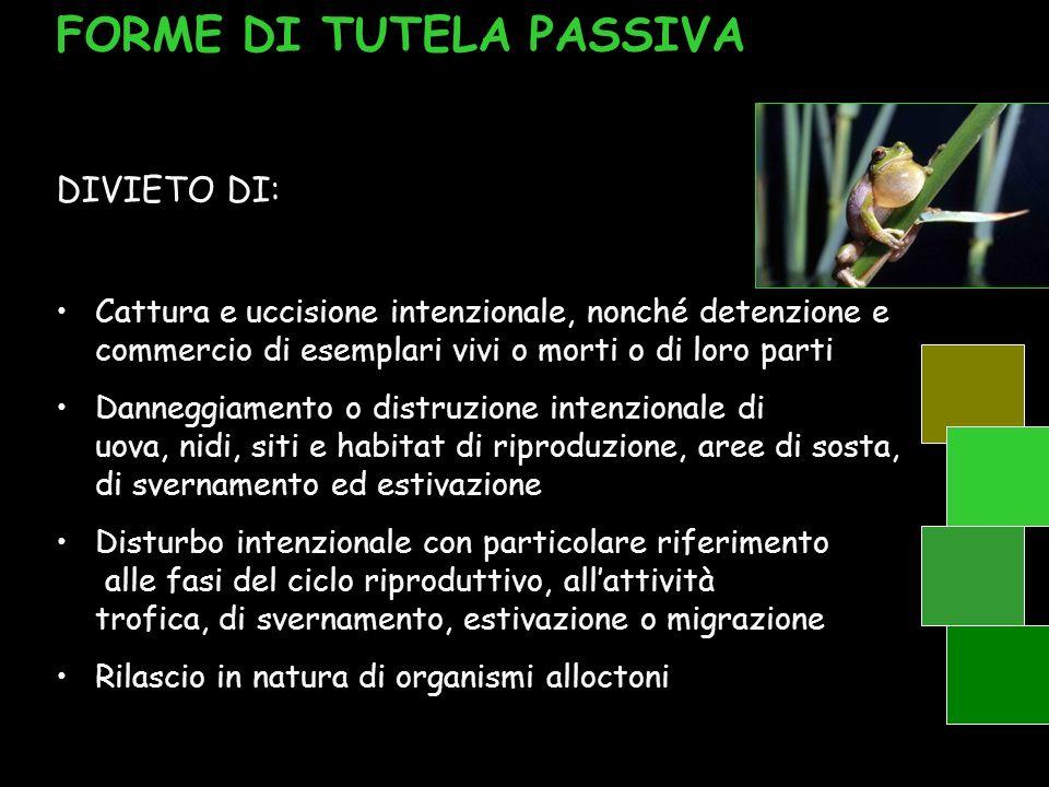 FORME DI TUTELA PASSIVA