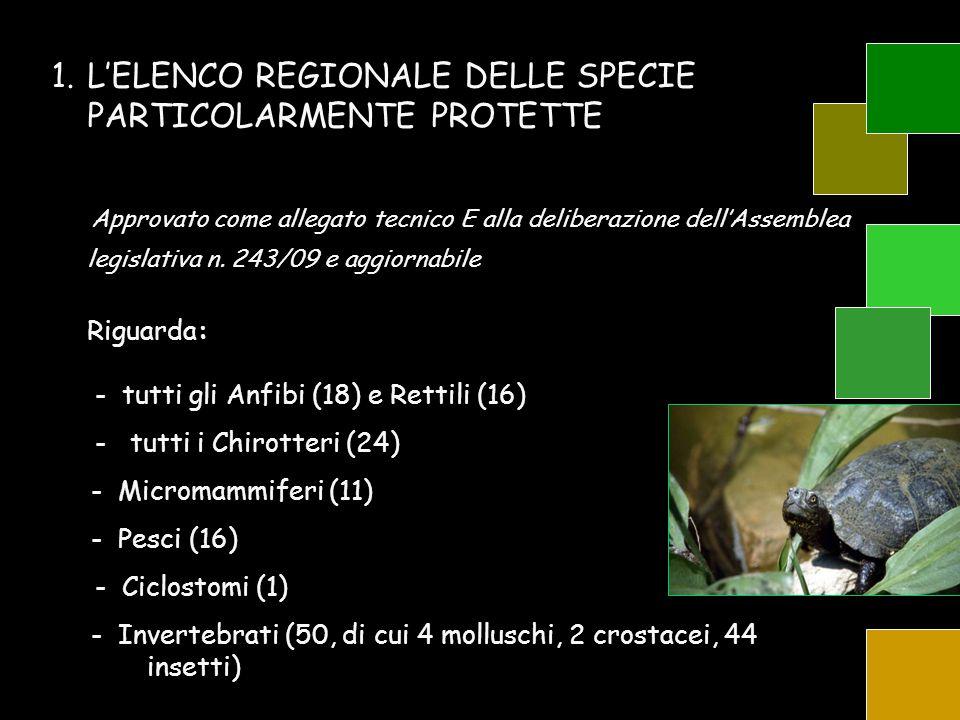 L'ELENCO REGIONALE DELLE SPECIE PARTICOLARMENTE PROTETTE