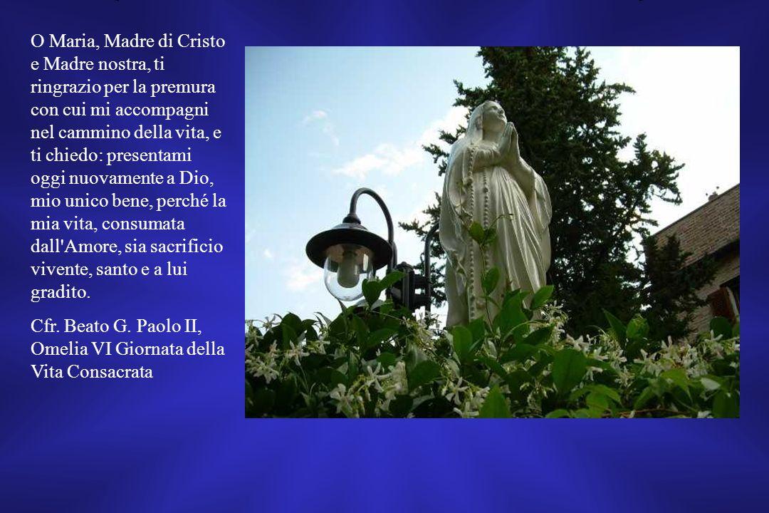 Cfr. Beato G. Paolo II, Omelia VI Giornata della Vita Consacrata