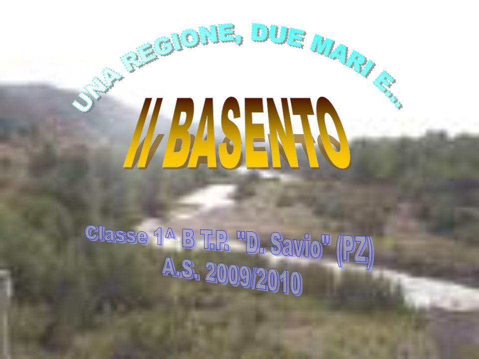 Classe 1^ B T.P. D. Savio (PZ)