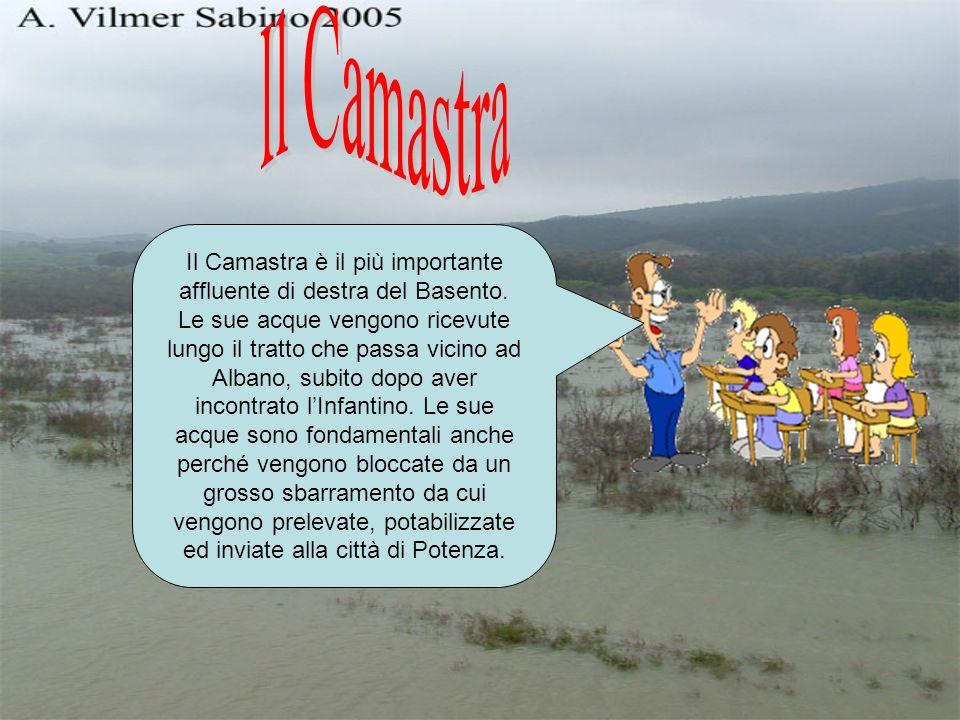 Il Camastra è il più importante affluente di destra del Basento.