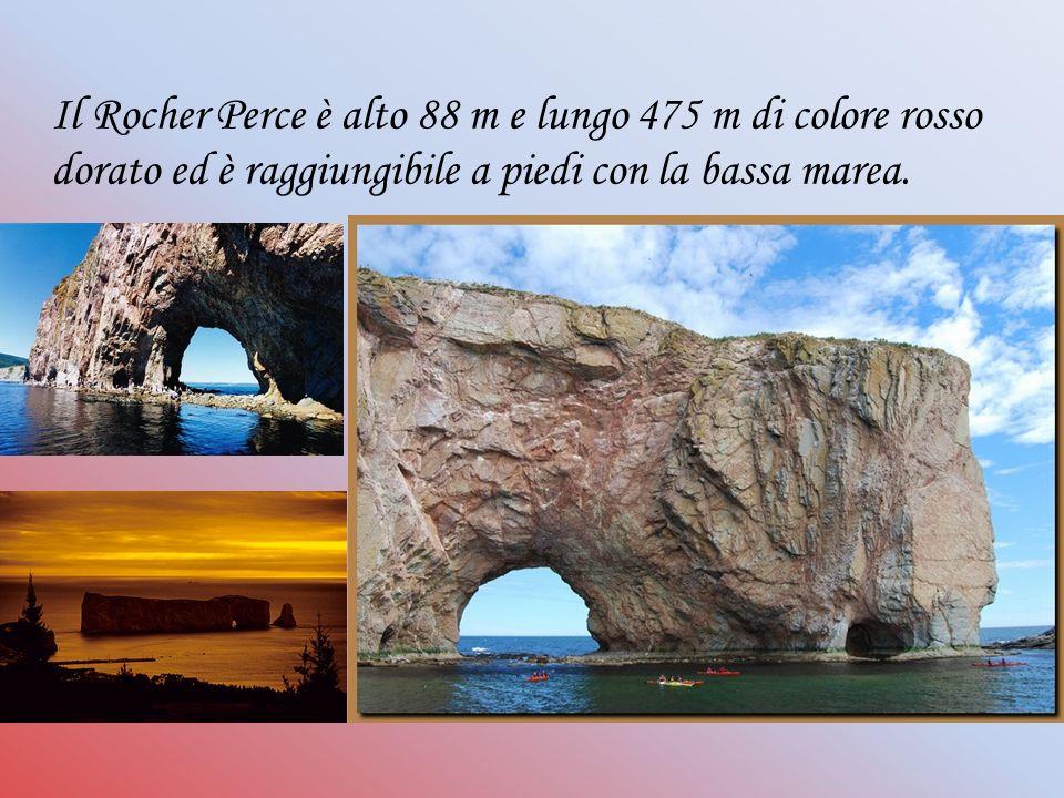 Il Rocher Perce è alto 88 m e lungo 475 m di colore rosso dorato ed è raggiungibile a piedi con la bassa marea.