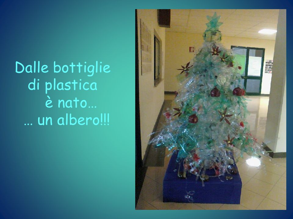 Dalle bottiglie di plastica è nato… … un albero!!!