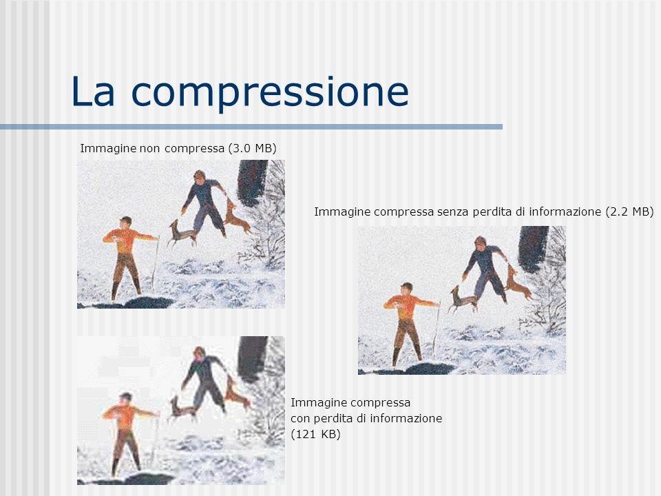 La compressione Immagine non compressa (3.0 MB)