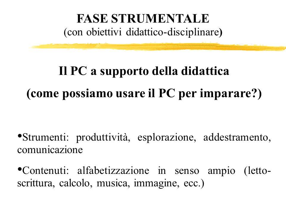 FASE STRUMENTALE (con obiettivi didattico-disciplinare)