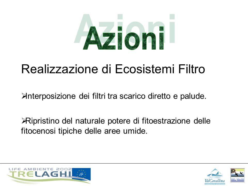 Azioni Realizzazione di Ecosistemi Filtro