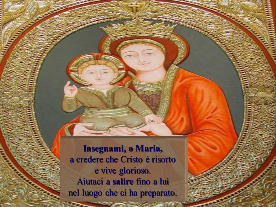 Insegnami, o Maria, a credere che Cristo è risorto e vive glorioso