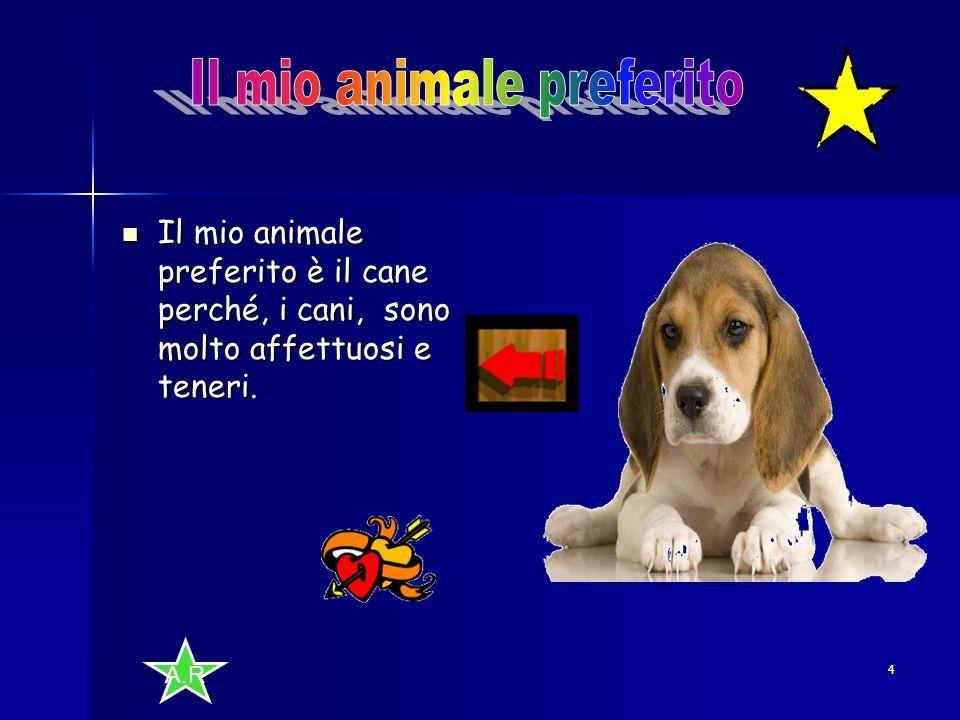 Il mio animale preferito