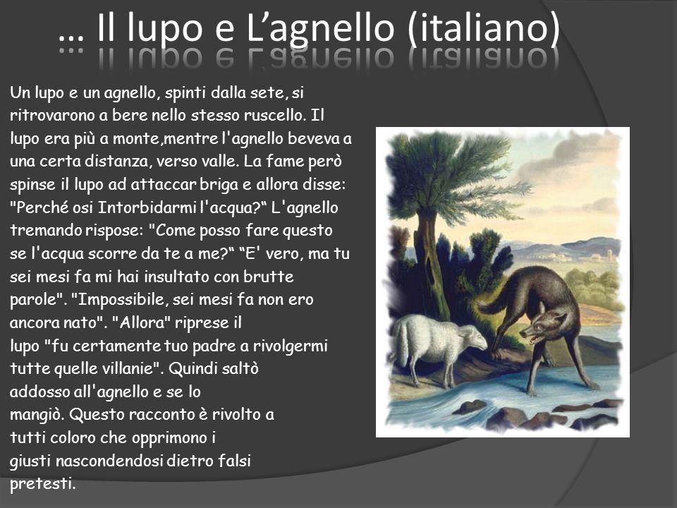 … Il lupo e L'agnello (italiano)
