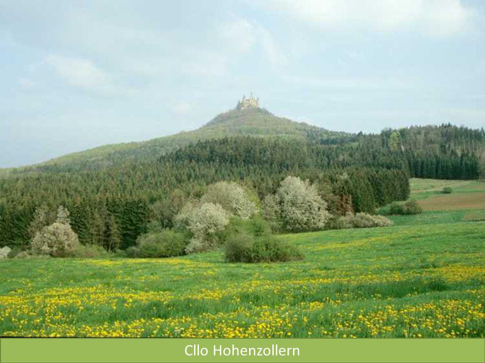 Cllo Hohenzollern