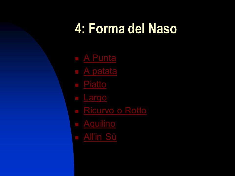 4: Forma del Naso A Punta A patata Piatto Largo Ricurvo o Rotto