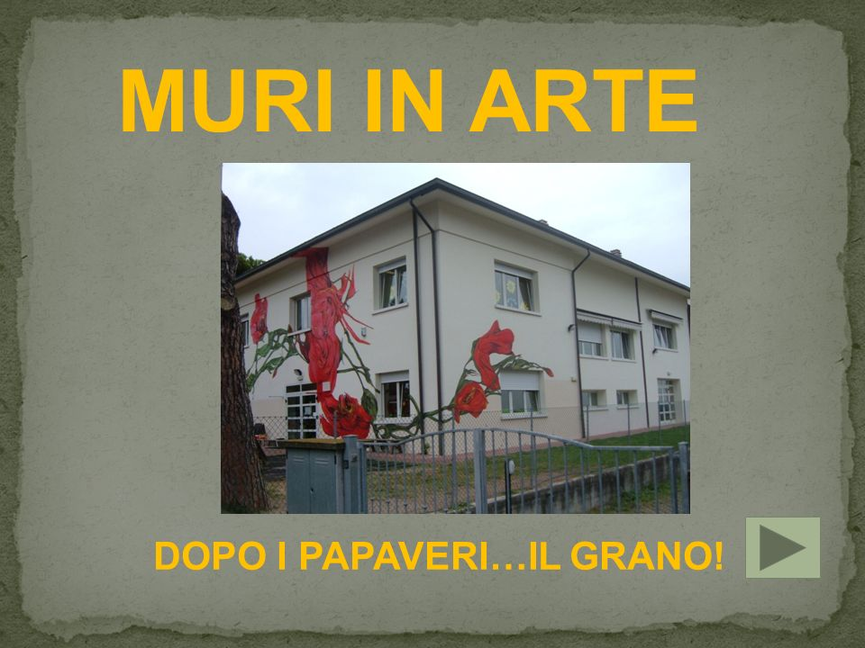 DOPO I PAPAVERI…IL GRANO!